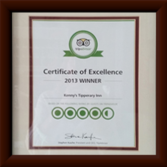 winner of Certificate of Excellence - 2013